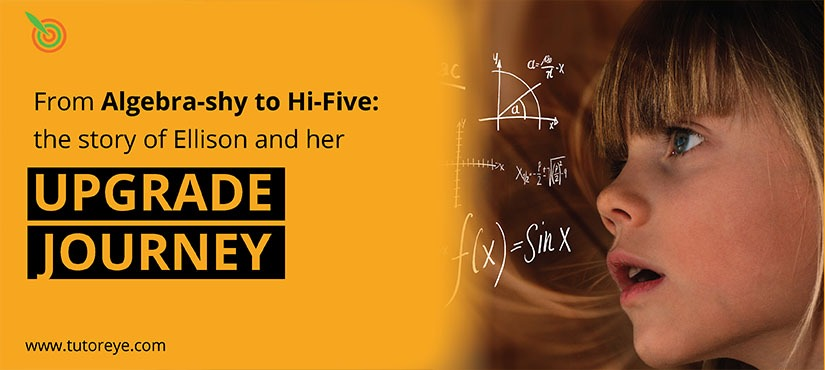 From Algebra-shy to Hi-Five